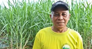 Daniel-Diamante interview alter trade fair trade connection philippines sugar cane