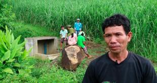 Sandrico-Cornelio  interview alter trade fair trade connection philippines sugar cane